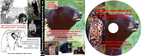 Bear eBook DVD