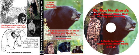 Bear eBook DVD